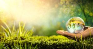 suchen_und_mailen_title grüne Wiese und Erde