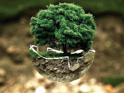Green Hosting – die 5 besten Anbieter